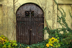 Memories Locked Away (Robert F. Carter) Tags: cloudy holly hollymichigan rain rainy streetphotography door doors chains old antique robertcarterphotographycom ©robertcarter