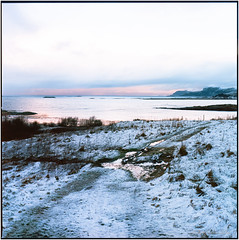 Blimsanden_Morning mood_Hasselblad (ksadjina) Tags: 6x6 blimsanden c41 december2017 hasselblad500cm kodakportra nikonsupercoolscan9000ed norway silverfast vigra analog film morningmood scan square winter