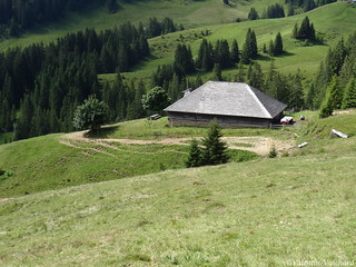 SF_DSC04210 - Switzerland, Gruyère region - Alpine pasture farm