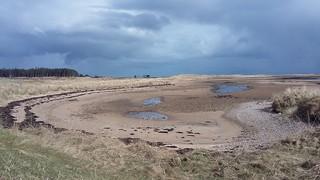 Littleferry Sands, near Golspie, Sutherland, March 2018