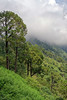 Jai Mata Di Trip ... (Bijanfotografy) Tags: india jaimatadi jaimataditrip jammukashmir jammu katra vaishnodevi nikon nikond500 nikondx nikon24mm28af nikonprime pilgrimage view landscape sky mountains forest