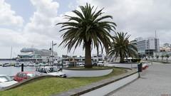 Norwegian Jade à Ponta Delgada, Açores, Portugal - 5942 (rivai56) Tags: pontadelgada azores portugal pt açores sonyphotographing norwegianjade cruise croisière shipbateau vessel