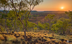 Scott Creek Station (jacciingham) Tags: mesa butte hills cattle scottcreek florariver katherineriver katherine wardaman sunrise dawn spinifex snappygums victoriahwy nt australia outback savannah station