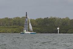 LOX_3721 (Lox Pix) Tags: australia queensland brisbanetogladstone yachtrace catamaran trimaran 2018 bossracing multihull loxpix moretonbay shorncliffe cabbagetreecreek rudder aground sailing loxworx