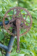 Compass heading (A Different Perspective) Tags: bali bicycle farme old petal rust shed sprocket
