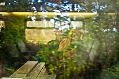 #OnTheRoad Let's enjoy speed & travel! #selfie #Leica #LeicaCamera (albericjouzeau) Tags: travel travelling voyage selfie dansletrain tgv vitesse speed paysage landscape effect reflection reflet leica leicacamera
