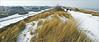 De gauche à droite, le village De Banjaard, la dune et la mer du Nord, De Banjaard, Kamperland, Noord-Beveland, Zeelande, Nederland (claude lina) Tags: claudelina nederland hollande paysbas zeelande zeeland merdunord noordzee plage dune beach debanjaard kamperland noordbeveland oyat