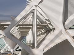 Split rhombus (Teelicht) Tags: ciudaddelasartesylasciencias ciutatdelesartsilesciències comunidadvalenciana museodelascienciaspríncipefelipe museudelesciènciespríncepfelip spain spanien stadtderkünsteundderwissenschaften valencia architektur architecture santiagocalatrava cityofartsandsciences