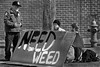Need Weed (Ian Sane) Tags: ian sane images needweed cardboard sign homeless men park ranger black white monochrome candid street photography ankeny plaza saturday market old town portland oregon canon eos 5ds r camera ef70200mm f28l is usm lens cannabisculture