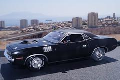 1971 Plymouth Hemi Cuda diecast 1:24 made by M2 Machines (rigavimon) Tags: diecast miniaturas 124 autosaescala plymouth hemi cuda miniature m2 1971 mopar