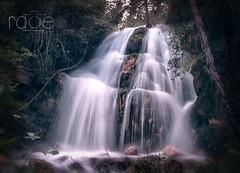 Seda -LA PARRILLA- (ROGE gonzalez ALIAGA) Tags: naturaleza agua yeste paisaje