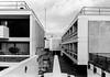 Maiden Lane Estate ([J Z A] Photography) Tags: ilford maidenlaneestate rodinal125 yashica35cc delta400 analog 35mm bw jzaphotography monochrome attreecouk filmisnotdead grainisgood ishootfilm jzaphotographycouk