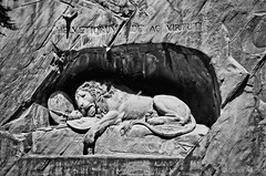 Löwendenkmal, the Luzern Lion - Switzerland (Carlos Alkmin) Tags: switzerland luzern lucerna löwendenkmal lowendenkmal lion architecture europe street urban outdoors sculpture stone history ancient art cultural culture facade landmark heritage blackandwhite