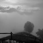 foggy mountain thumbnail
