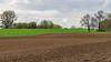 Monheim vor dem Rheindamm (KL57Foto) Tags: 2018 april frühling germany jahreszeitenundwetter kl57foto monheimmonheim am rhein nrw natur nordrheinwestfalen olympus penemp2 rheindamm