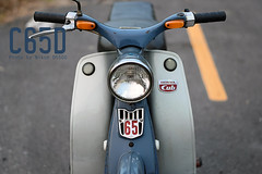 DSC_0723 Mo (golfC65Y) Tags: c65ไฟตก c65y c65ไฟต่ำ cub c65d c65 c100 classic c102 c105 ct ca100 ca102 cm90 cm91 ca105 supercub motorcycle honda thailand vintage super ホンダ スーパーカブ カブ