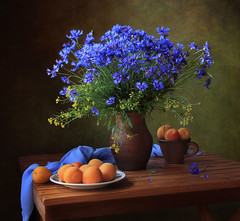 Still life with a bouquet of cornflowers and apricots (Tatyana Skorokhod) Tags: stilllife bouquet cornflowers apricots flowers fruit indoors decor