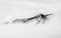 They Say It's Only Temporary (It's Not) (John Westrock) Tags: blackandwhite landscape clouds mountains nature minimalism minimal trees washington pacificnorthwest snoqualmiepass canoneos5dmarkiii canonef100400mmf4556lisusm