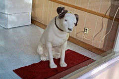 His Master's Voice, Tarboro, NC (Robby Virus) Tags: tarboro northcarolina nc nipper dog his masters voice statue trademark window display emi rca jvc