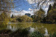 The Pond (Clayton Perry Photoworks) Tags: vancouver bc canada richmond spring minorupark skyline explorebc explorecanada