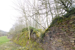 Former embankment on Peak Forest Tramway      April 2018 (dave_attrill) Tags: peak forest tramway chapelenlefrith chapel milton chinley ferodo works bugsworth basin canal derbyshire buxworth horsedrawn railway line narrow gauge 1820s old cycle path footpath furnessvale newmills peakforest doveholes embankment april 2018 whaleybridge