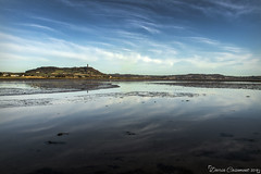 Scrabo Tower from Islandhill (dareangel_2000) Tags: islandhill comber countydown seaside shore coastline coastal seascape seascapephotography dariacasement northernireland landscape scrabo scrabotower earlymorning reflections