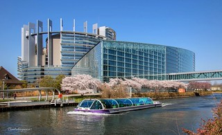 European Parliament with White Cherry Blossoms - Strasbourg France - April 2018