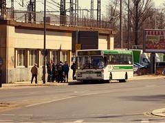 Mercedes-Benz O405 (Ellenalu86) Tags: youngtimer saxony bus transport publictransport dvb dresdnerverkehrsbetriebe sonderfahrt sachsen phototreveller rumknipsen öffentlicherverkehr dresden linienbus mercedesbenz snapshot dampfloktreffendresden2018 railwayday reisen traveling