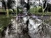 Subtract_0006 (troutcolor) Tags: imagemagick random victoriapark bash spring experiment