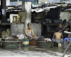 Fish Market (Beegee49) Tags: street fish market cleaning bacolod city philippines