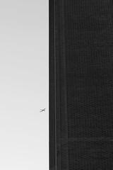 plane (joe_barton17) Tags: london tube tate tatemodern modernism highcontrast contrast blackandwhite monochrome streetphotography street realism lines linearforces greenwich
