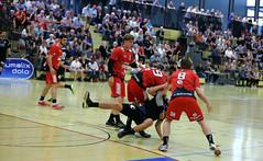 AW3Z8083_R.Varadi_R.Varadi (Robi33) Tags: action ball basel foul handball championship fight audience referees switzerland fun play rtv1879basel gamescene sports sportshall viewers
