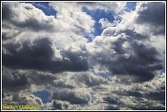 QUIERO VIVIR EN LAS NUBES. I WANT TO LIVE IN THE CLOUDS. NEW YORK CITY. (ALBERTO CERVANTES PHOTOGRAPHY) Tags: clouds nubes vivir live want querer luz light color colores colors brightcolors brillo bright cielo sky azul blue blanco white gris indoor outdoor blur retrato portrait photography photoborder colorlight sol sun cloudscapes landscapes landscape streetphotography