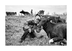 Cowboy (Jan Dobrovsky) Tags: people cowboy nikond810 blackandwhite monochrome document ukraine odessa cow cows outdoor character cigarette