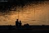 Pesca al tramonto (antonio.canoci) Tags: pesca padre mare figlio canon 70d 1585usm porto santo stefano toscana