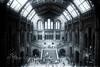 Old Times ? (steff808) Tags: uk england angleterre londres museum naturalhistorymuseum nikon nikond750 nikon24120 noiretblanc blackandwhite blancoynegro bw biancoenero
