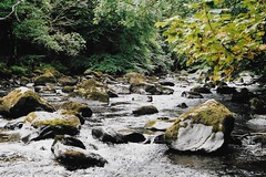Summer Rivers (lee_moffat) Tags: vintage old flow moss stones stepping water river highlands hermitage outdoor outdoors green nature scotland mtl5b mtl5 praktica 400 superia fuji fujifilm photography photo film moffat lee