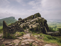 The Roaches (Simon Hubbert) Tags: roaches peak district england north midlands middle forest tree nature wild life animal path stone wall old vintage hill grass summer spring day sun sky cloud hike travel walking hiking panasonic lumix g80 g85 heather bloom flower high mountain landscape