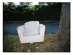 Comfy Chair (@fotodudenz) Tags: fujifilm fuji ga645w ga645wi kodak portra 160 wide angle medium format film rangefinder 120 645 6x45 28mm 45mm surrey hills melbourne victoria australia 2018 chair tree grass road