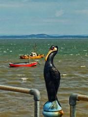 Morecambe Bay (tubblesnap) Tags: morecambe seaside sunny day sea coast mobile phone cellphone