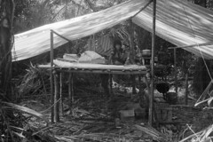 kalitami672 (Vonkenna) Tags: indonesia kalitami 1970s seismicexploration