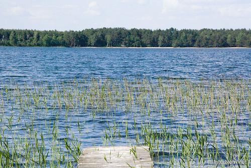 Шацький Національний Природний Парк Озеро Пісочне  МІстки InterNetri  Ukraine 137