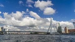 DSC05818edited (wailap) Tags: rotterdam netherlands holland erasmusbrug