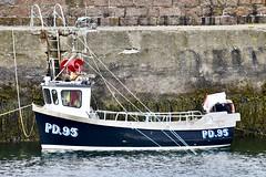 Boddam Harbour - Aberdeen Scotland - 30/5/2018 (DanoAberdeen) Tags: pd95tiffanylynne lynne tiffany pd95 danoaberdeen 2018 trawlers trawlermen transport fishingtrawler trawler boddamharbour boddam fishingvillage candid amateur boats workboats harbour cod mackrel salmon scallops aberdeenscotland aberdeenshire danophotography wife fishingwife bothy boddamscotland autumn summer spring winter thistleseafoods peterhead buchan northsea whitefish shellfish