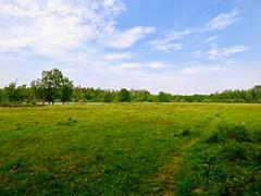 Geen koeien meer in de Baardwijkse Overlaat . (Franc Le Blanc .) Tags: baardwijkseoverlaat landschap landscape drunen waalwijk