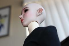 Soul Doll Calia head on Iplehouse old JID body (GroovyBlue) Tags: iplehousejid souldoll souldollvito souldollvitogirl souldollcalia bjdhybrid