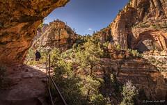 Hiking the Canyon Overlook Trail (NettyA) Tags: 2017 canyonoverlooktrail sonya7r usa utah zioncanyon zionnationalpark hiker hiking mountains track trail travel people