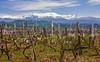 IMG_3882-1 (Andre56154) Tags: albanien albania landschaft landscape gebirge mountains himmel sky wolke cloud montain wein wine