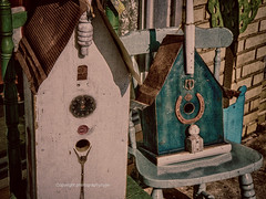 Spring is for Birds (Photographybyjw) Tags: spring is for birds couple interesting rustic bird houses found north carolina photographybyjw chair brick sunlight rural country usa