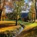 Dalefield Autumn